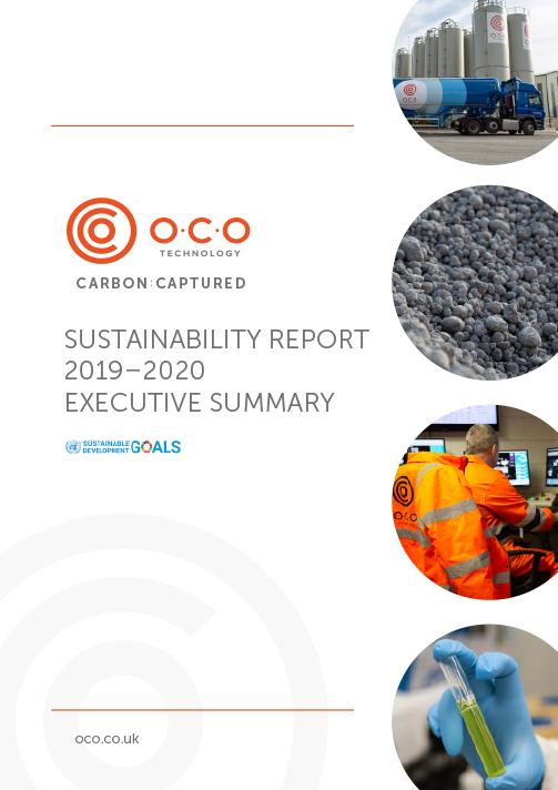 Sustainability Report 2019-2020 Executive Summary
